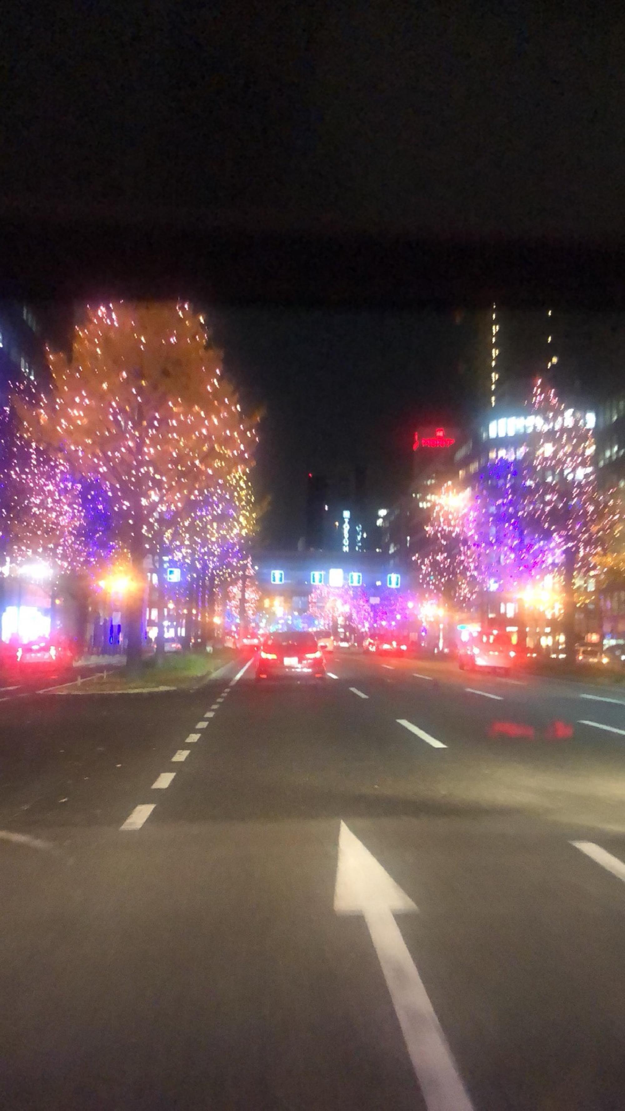 大阪市中央区〜御堂筋ライトアップ_画像