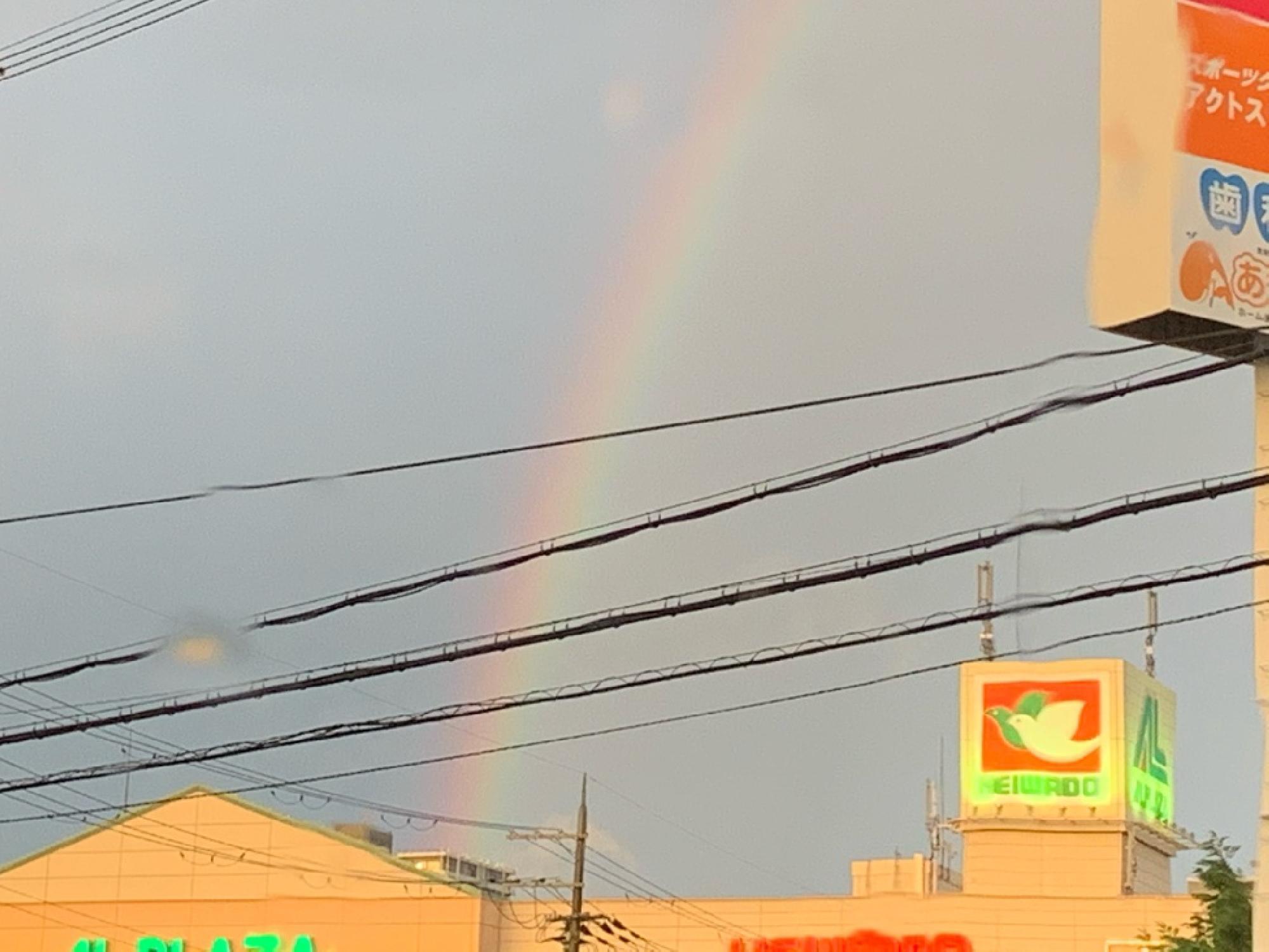 黄昏時の虹_画像_3