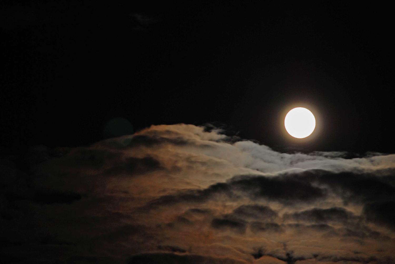 月颯 TUCASA エッセンシャルオイルブレンド_画像_1