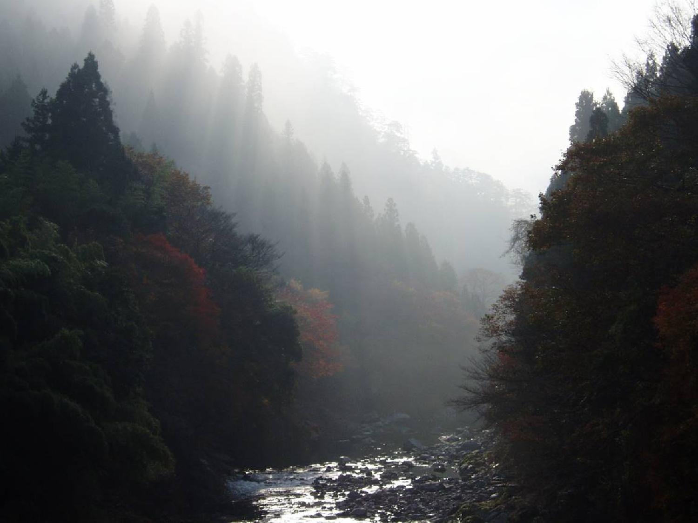 雲水 エッセンシャルオイル ブレンド _画像_1