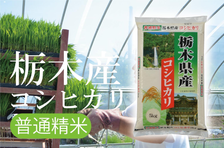2020/09/30 令和2年産 栃木産コシヒカリ 無洗米栃木産コシヒカリ 新米が入荷しました!