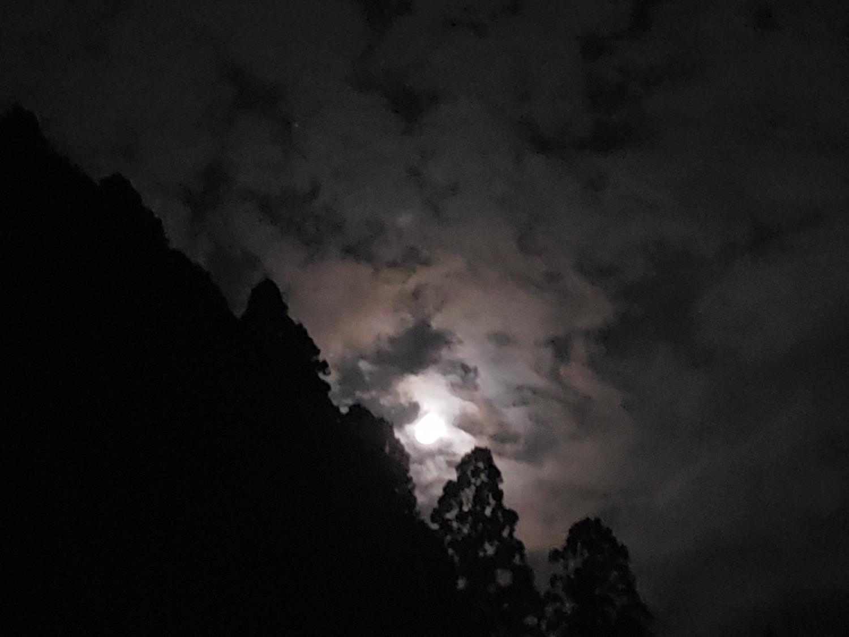 観月 画像_1
